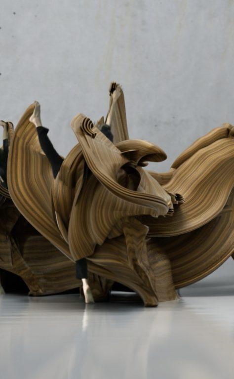 Human Movement    Motion Sculpture