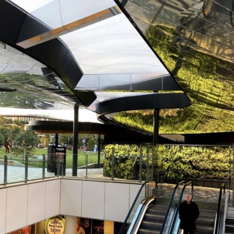 The Canopy | Lane Cove