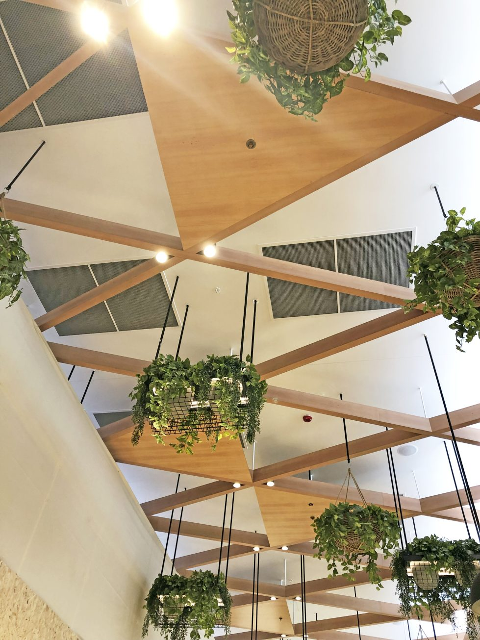 design clarity, hanging plants from ceiling, timber structure, baskets with plants, featured design, cost-effective solution, nice interior for high ceilings