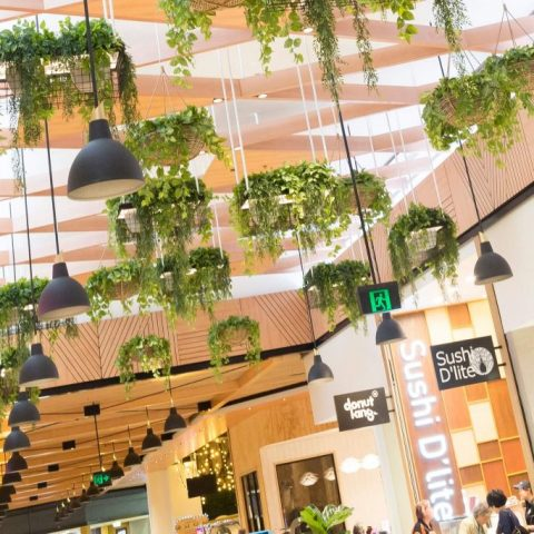 Toombul Shopping Centre for Mirvac – Fresh Food Mall | Brisbane